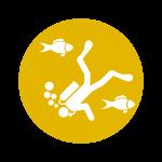 Eco Sports · Turismo · Pacífico Colombiano · Ecoturismo · BePacific